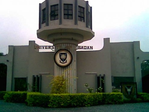 Strike in the University of Ibadan Paralyses Academic Activities