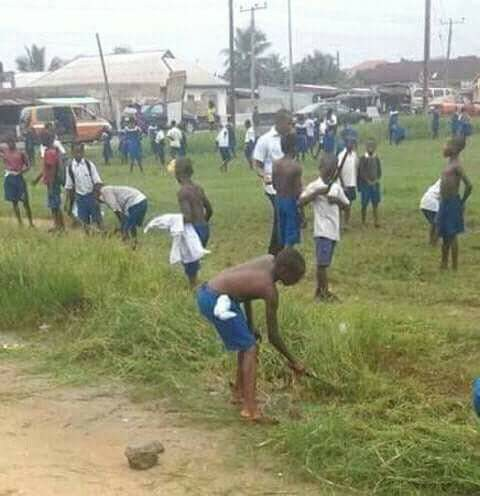 Children cutting Grass in school