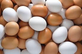 Egg production farming in nigeria